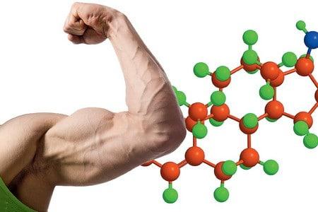 сколько тестостерона вырабатывает мужской организм в день