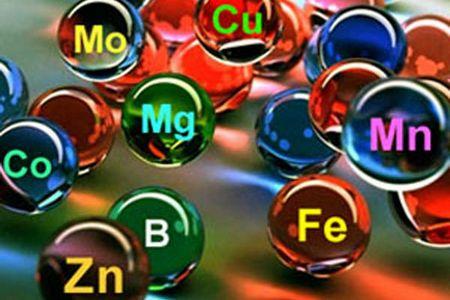 схематическое изображение витаминов и минералов